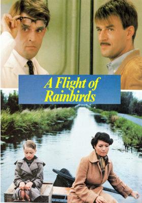 Flight of Rainbirds